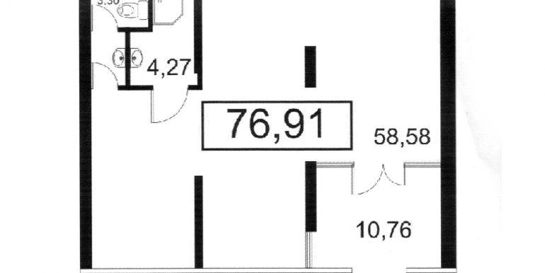 план 76,91м2, 1эт